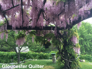 GloucesterQuilter_Wisteria2015